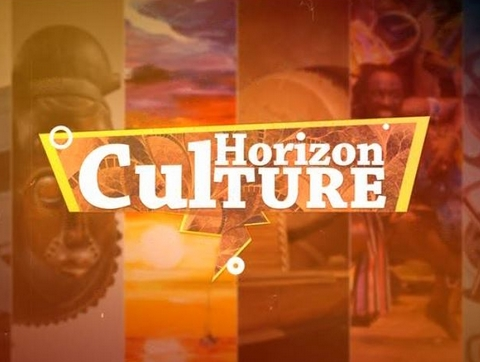 Horizon Culture